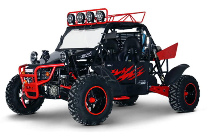 V-Twin Buggy 800 Platinum 2-S