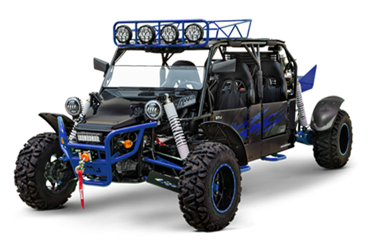 V-Twin Buggy 800 Platinum 4S