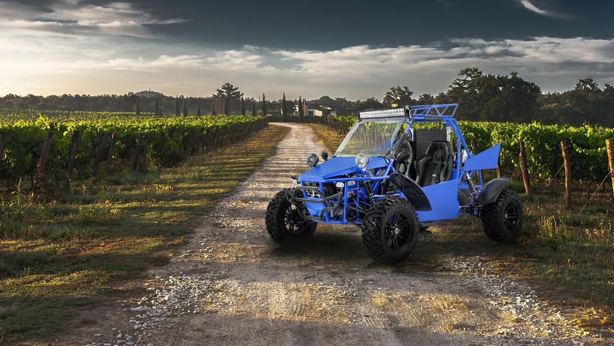BMS Motorsports | Riverside, California BMS® Dune Buggy 800 V-Twin 4X4