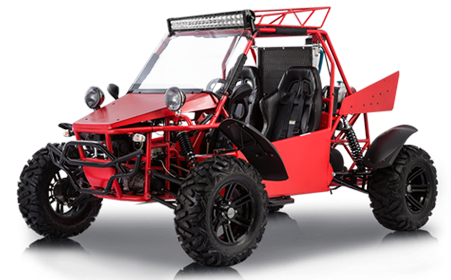 V-Twin Buggy 800 L4